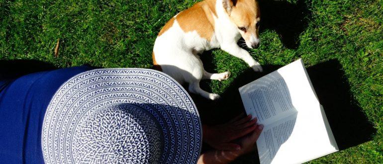 woman reading grass dog